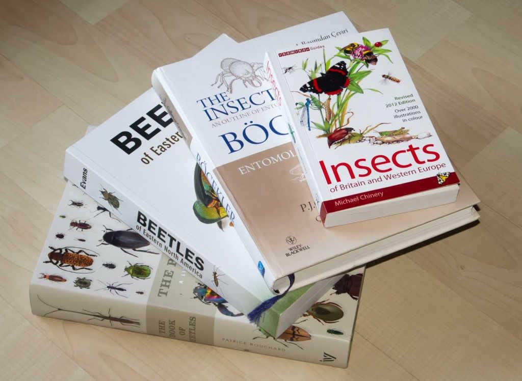 The Book of Beetles, entomoloji kitaplarım arasında şimdilik en iri yapılı olan