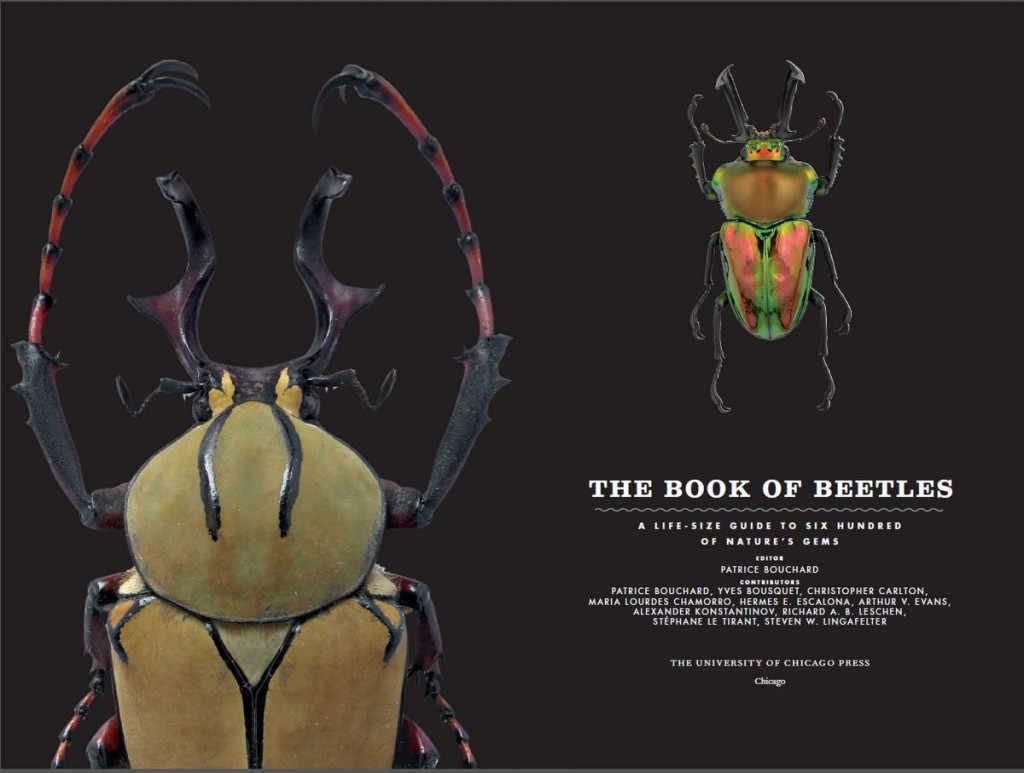 book_of_beetles_1