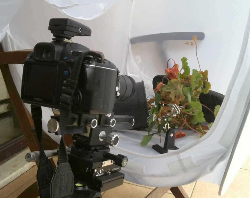 dogal-isik-makro-fotograf-softbox-cadir-2